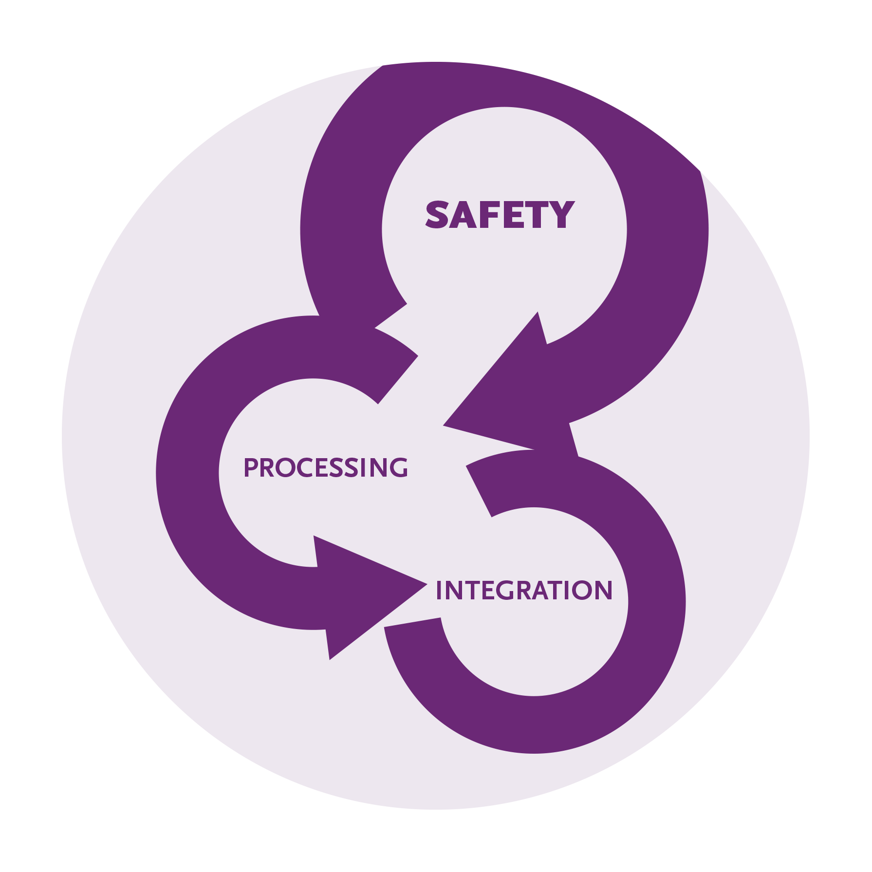 Safety, Provcessing and Integration are the three stages of therapy