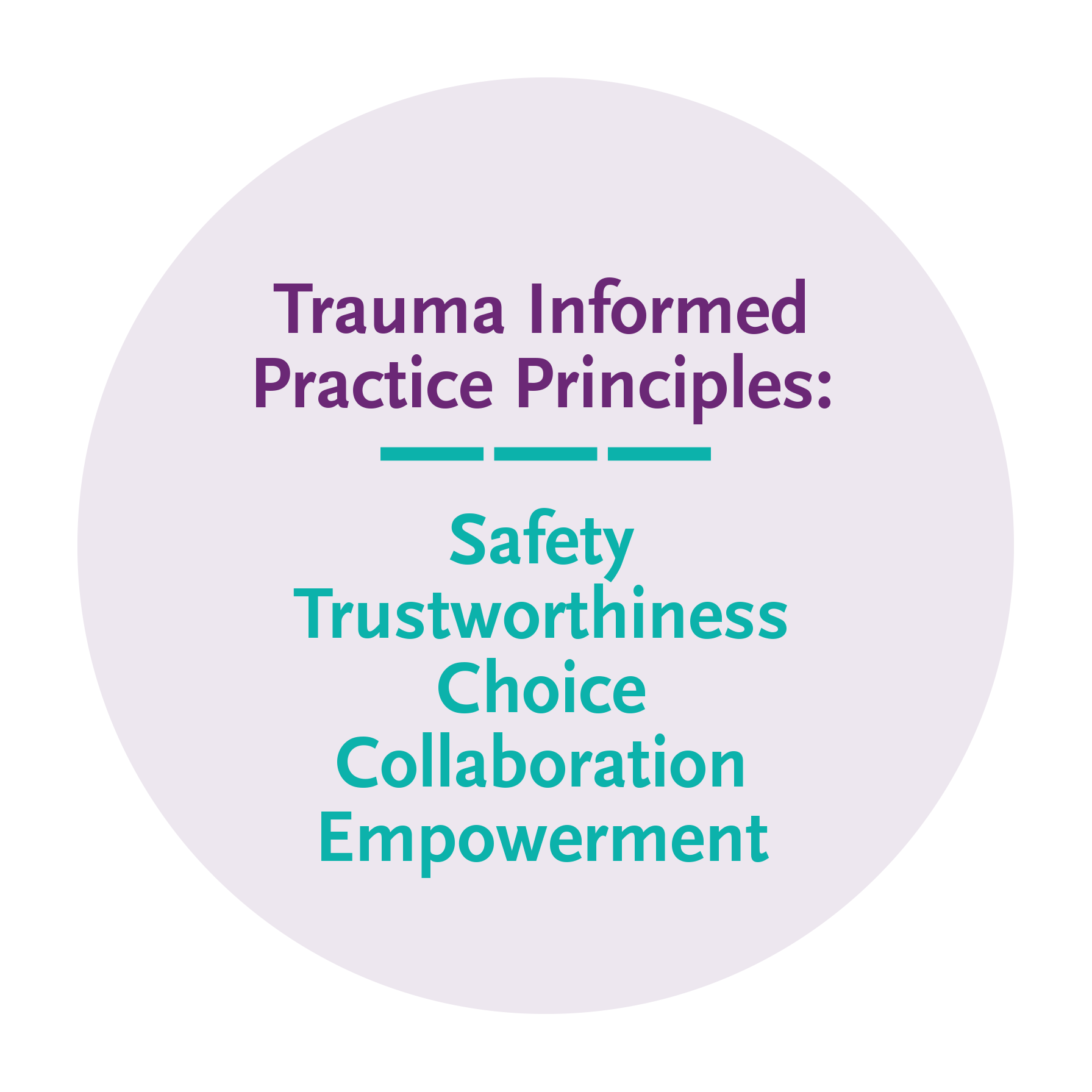 Trauma informed practice principles