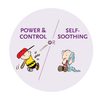 Power & Control or Self Soothing?