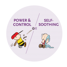 PSB and SAB are usually forms of power and control or self-soothing behaviours